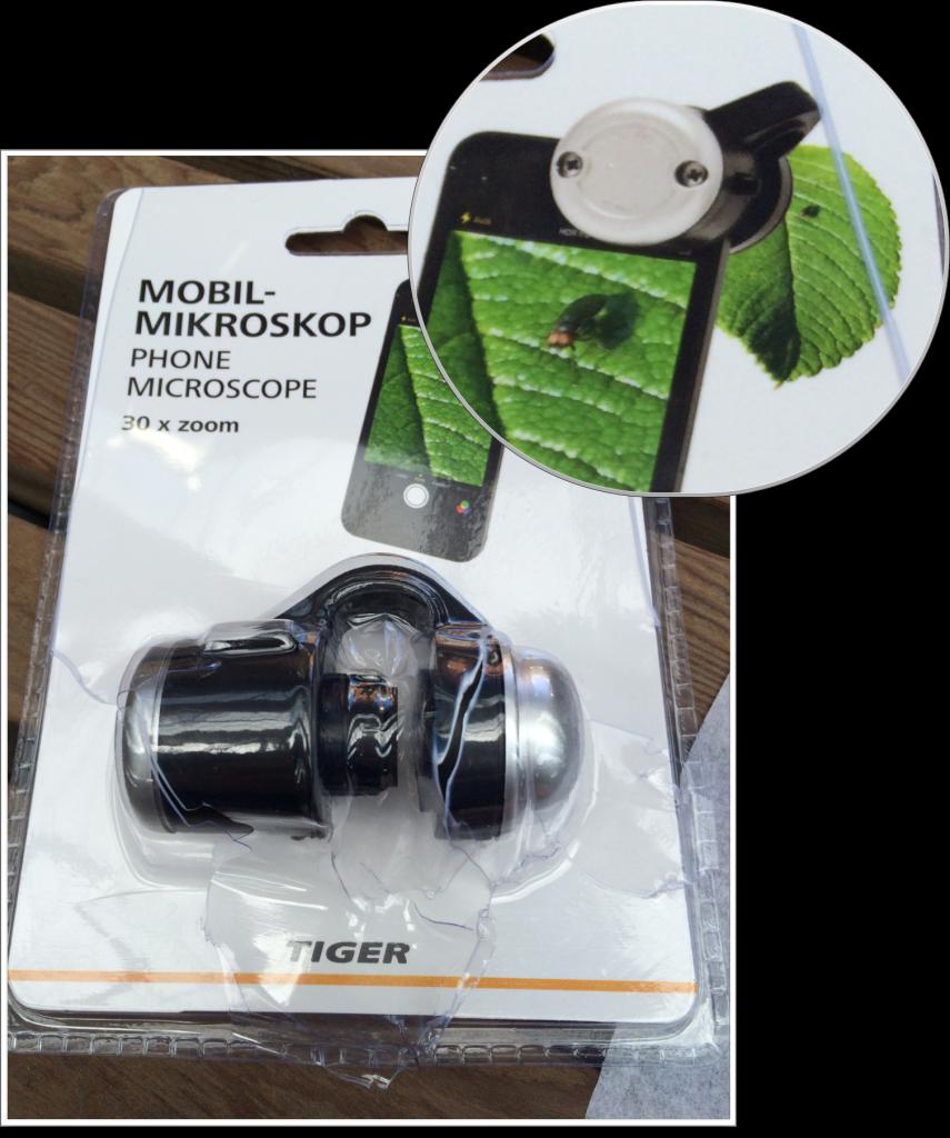 Tiger lens image