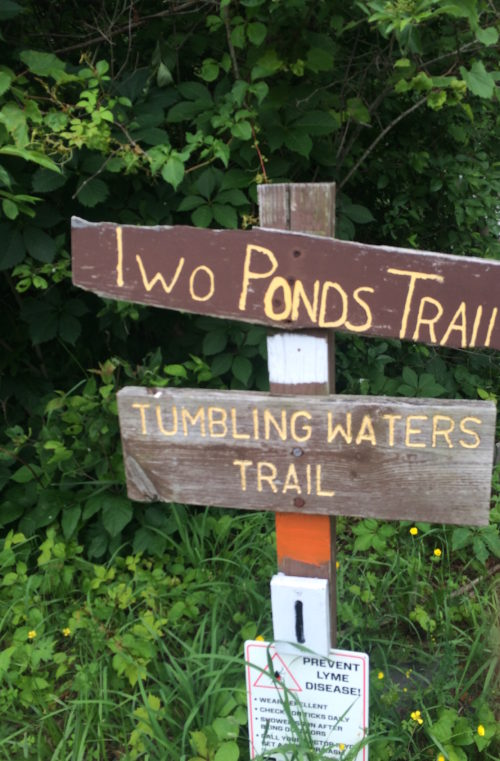 two ponds trail PEEC image