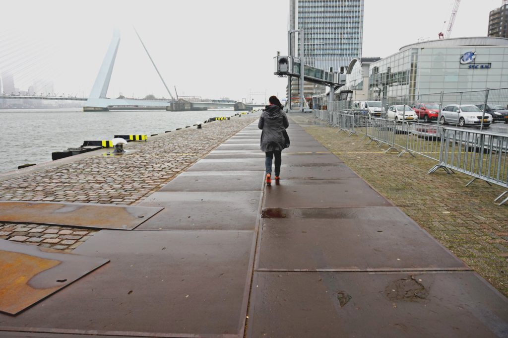 river walk in rotterdam image
